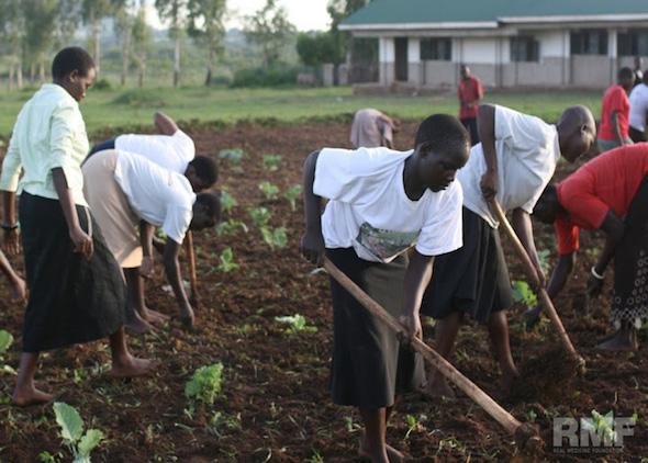 gardening in uganda